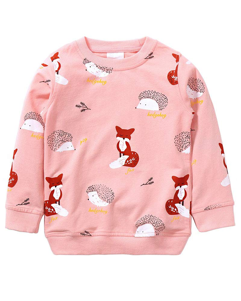 c261fef4ac8 Girls Sweatshirt Cotton Top for Kids T Shirt Casual Jumper Toddler Clothes  Long Sleeve Pullover Autumn Winter 1-7 Years - Christmas Jumpers UK