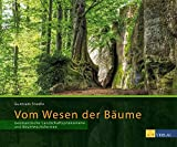Vom Wesen der Bäume: Geomantische Landschaftsphänomene und Baumwuchsformen - Guntram Stoehr