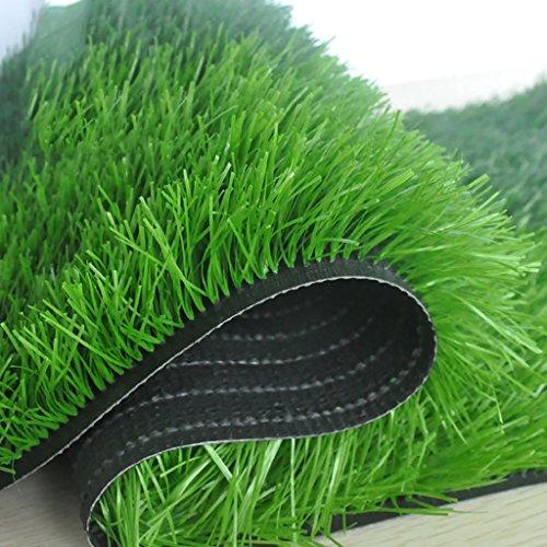 WENZHE-Artificiales sintético plástico Grass Hierba Artificiales Alfombra Césped Campo De Fútbol Alta Densidad Barato, 2 Metros De Ancho, Grueso 40/50 Mm, 4 Estilos Césped ( Color : C-50mm , Tamaño : 2*2m )