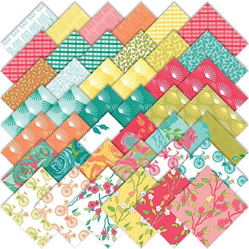 ack By Shannon Gillman Orr; 42-5 Precut Fabric Quilt Squares ()