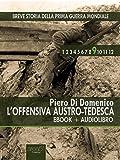 Breve storia della Prima Guerra Mondiale vol. 9 (ebook+audiolibro): L'offensiva austro-tedesca