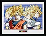 GB Eye Limited GO groupe de dragon Ball Z Œil d'Cadre, Multicolore, 30x 40cm