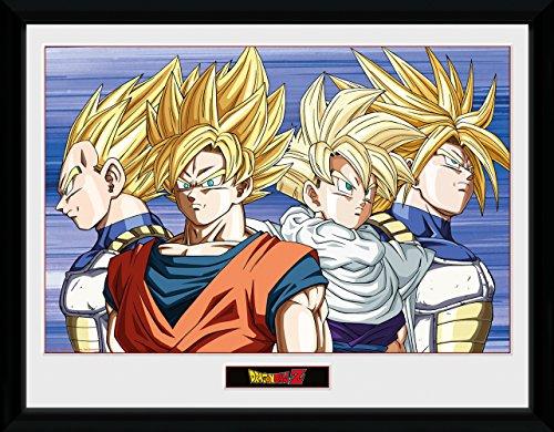 Póster enmarcado con los personajes de Dragon Ball Z (30x 40cm),