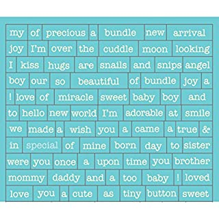 Authentique Paper Cuddle Boy Cardstock Stickers 3 x 4-inch Petite Diction Mini Words and Phrases, Acrylic Multicolour, 0.02x9.52x10.79 cm