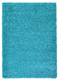 Small 5cm Thick Shag Pile Soft Shaggy Area Rugs Modern Carpet Living Room Bedroom Mats (60x110cm (2'x3'7), Teal)