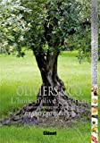 Oliviers & Co, l'huile d'olive grand cru - Emotions, sensations, créations