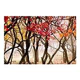 Waldtapete - Vliestapete Premium - Japan im Herbst - Fototapete Wald Breit Vlies Tapete Wandtapete Wandbild Foto 3D Fototapete, Größe HxB: 290cm x 432cm