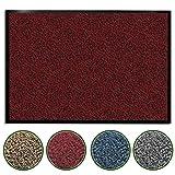 casa pura Premium Fußmatte/Sauberlaufmatte für Eingangsbereiche | Fußabtreter mit Testnote 1,7 | Schmutzfangmatte in 8 Größen als Türvorleger innen und außen | rot - meliert | 60x90cm