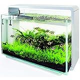 Superfish Design-Aquarium 80 in weiß mit Filter und LED Beleuchtung