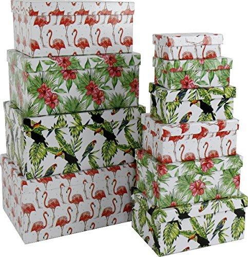 Paper Collection Lote DE 10 Cajas de Regalo de Almacenaje Decorativas 'Flamenco Palma Tropical Hibisco Tucan' Rectangulares