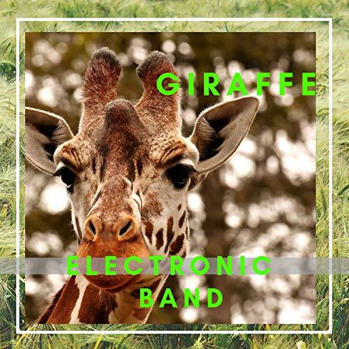 MASAI - Masai Giraffe