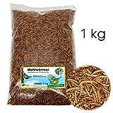 Ornigold Mehlwürmer getrocknet 1kg Premium Insekten Wildvogelfutter - Ganzjahresfutter für Wildvögel, Hühner, Hamster, Reptilien und Koi