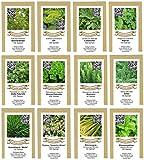 exotic-samen Saatgutsortiment Saatgut Sortiment - Kräuterbeet - 12 Sorten -