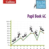 Pupil Book 6C (Busy Ant Maths)