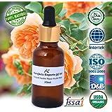 Ancient Healer 100% Natural Rose Musk Attar (30 ml)