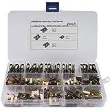 Roestvrijstalen clipmoeren, Asudaro 110 stuks metalen U-moeren, autodeurbekledingsschroef U-type bevestigingsklem voor de bin