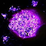 Qedertek Solar String Lights 21ft 50 LED 8 Modes Fairy Blossom Flower Outdoor Garden Lights for Home, Lawn, Wedding, Patio, Party and Holiday Decorations (Purple)