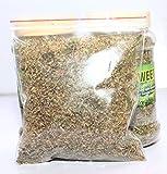 #5: Zooqa Stevia Seed Home Seeds - Set of 100