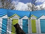 OLPro Unisexe cabines de plage 4Compact Brise-vent tubes d'acier, Blanc, 4.8m
