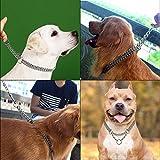 Hypeety Hundehalsband mit Halskette, Martingal, aus Metall und Edelstahl, für mittelgroße und große Hunde