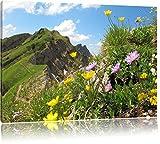 Blumenwiese im Frühling Bild auf Leinwand, XXL riesige Bilder fertig gerahmt mit Keilrahmen, Kunstdruck auf Wandbild mit Rahmen, guenstiger als Gemaelde oder Bild, kein Poster oder Plakat, Format:120x80 cm