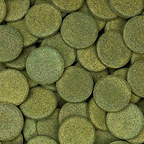 sera Wels-Tabs XXL 1.000 ml das Futter für größere Welse: Als Boden- oder Hafttablette nutzbar - 5