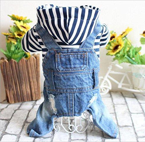 PLHF Cowboy-Haustier-Kleidung Hoodies-Mantel für Tyeddy Bärnhund-Herbstkleidung, xl