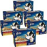 Felix Sensations en gelée Repas pour chat adulte Viandes 12 x 100 g - Lot de 6 (72 sachets fraîcheurs)