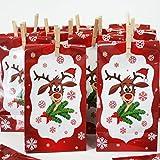 Adventskalender Didi mit 24 Tüten aus Papier + 24 Mini-Holzklammern + Sticker 1-24 - Geschenktüten Weihnachtsgeschenktüten