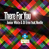 There for You (feat. Noelle Barbera) (Pako Di Rocco and Roby Mass Remix)
