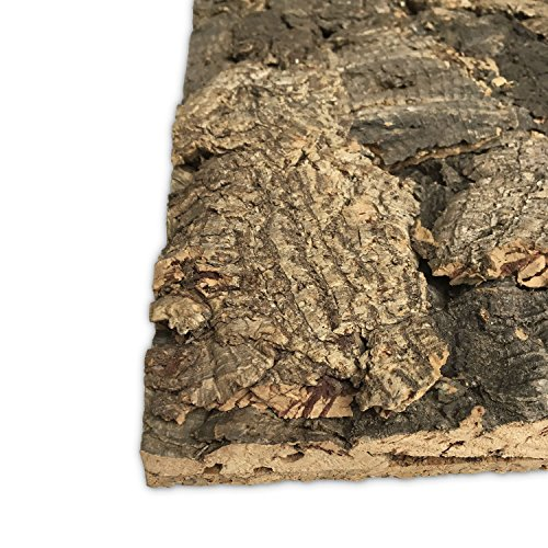 Vogelgaleria Kork Rückwand Terrarium Natur 45 x 60cm mit Wunschzuschnitt | Kork Pinnwand |Terrariumrückwand | Funktionale Terrarium Dekoration | Korkrückwand
