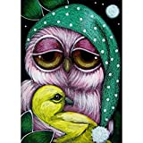 DIY 5D Diamond Painting, Crystal Rhinestone Embroidery Pictures Arts Craft for Home Wall Decor Owl Holding Duck 11.8 x 15.7