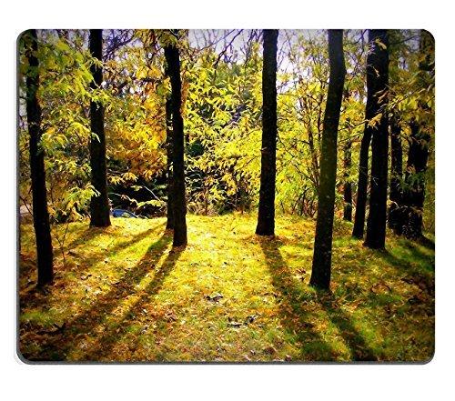 jun-xt-mousepad-muschio-muschio-verde-foresta-foglie-in-gomma-naturale-materiale-immagine-496913