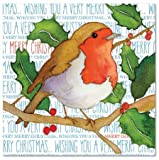 Wishing You A Very Merry Christmas – Peu de Noël Rouge-gorge sur branche de houx – Emma Ball Design Cartes et enveloppes de vœux de Noël – Lot de 6–12.5 cm