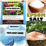 #9: NPK Fertilizer (600 gm) + Epsom Salt 300 gm -