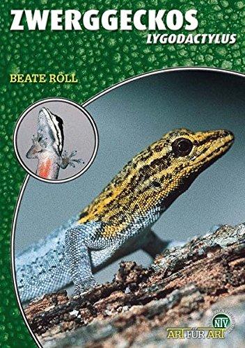 Zwerggeckos: Lygodactylus (Art für Art / Terraristik)