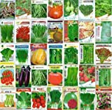 100pcs Gemüsesamen und verschiedenen Gemüsesaatgut Familie vergossen Balkon Garten vier Jahreszeiten pl