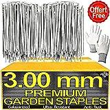 Piquet pour Bordure de Jardin X100PCS - 3.00mm