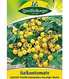 Tomate 'Balconi Yellow', 1 Tüte Samen