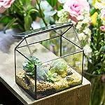 NCYP House Shape Close Glass Geometric Terrarium Wedding Centerpiece Tabletop Succulent Air Plants Planter Window Sill… 10