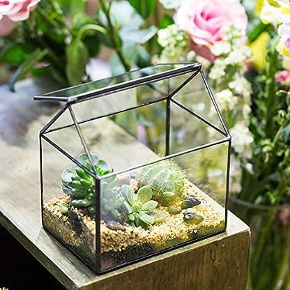 NCYP House Shape Close Glass Geometric Terrarium Wedding Centerpiece Tabletop Succulent Air Plants Planter Window Sill… 3