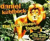 The Lion Sleeps Tonight -