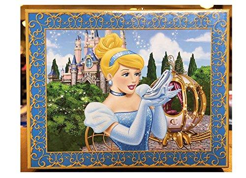 Disney Parks Beautiful Cinderella Musical Jewellery Box Music So This is Love (Cinderella Schmuck-box)