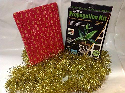 clonex-weihnachtskasten-gesetzt-tray-von-wurzel-riot-24-skalpell-formulex-100-ml-clonex-50ml-verwurz