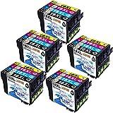 LIONPORE 20 Pack Hohe Kapazität Packung Epson 16 XL (T1631 T1632 T1633 T1634) Kompatible Tintenpatronen für Epson Workforce WF2630 WF2660 WF2760 WF2510 WF2750 WF2540 WF2530 WF2010 WF2650 Drucker