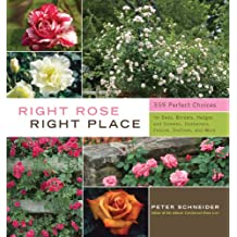 Right Rose, Right Place: 395 Perfect Choices for Beds, Borders, Hedges and Screens, Containers, Fences, Trellises, and More