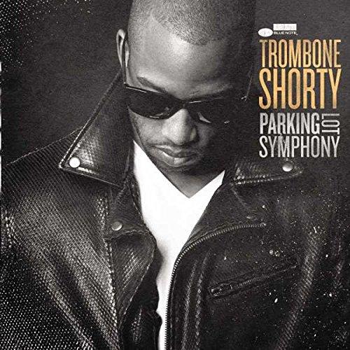 parking-lot-symphony