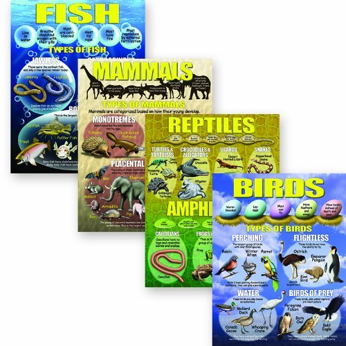 mcdonald-publishing-mc-p197-vertebrates-poster-set-by-mcdonald-publishing