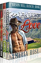Contemporary Cowboy Romance 3 Book Box Set