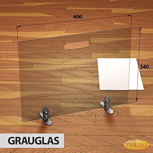 Stufa a Legna in vetro Parascintille Parascintille scintille protezione Griglia di sicurezza temprix | 540X 600X 6mm (L x A x P), Grigio
